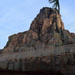 Canopy Bridges