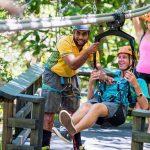 Zip Roller Coaster